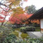 Autumn leaves and teahouse